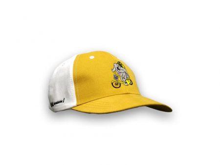 Cycling dog cap
